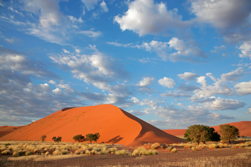 Grass, dune and sky, Sossusvlei, Namibia, southern Africa