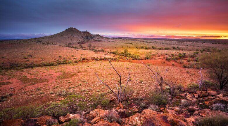 Wüstenlandschaft bei Alice Springs im australischen Outback
