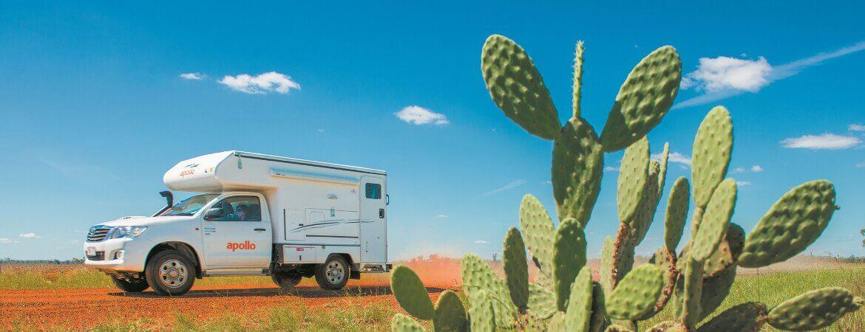 Apollo-Wohnmobil auf einer sandigen Straße vor einer Wiese mit Kaktus.