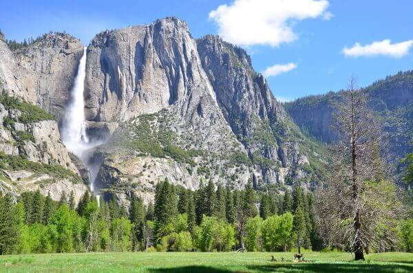 Yosemite Falls, einer der höchsten Wasserfälle der Welt