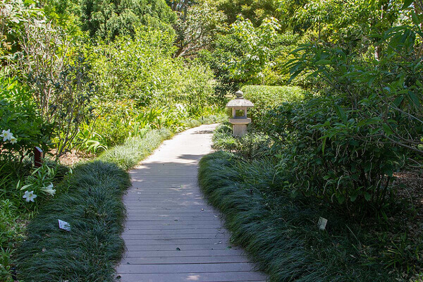Gemütlicher Holzweg in den Royal Botanic Gardens, Sydney