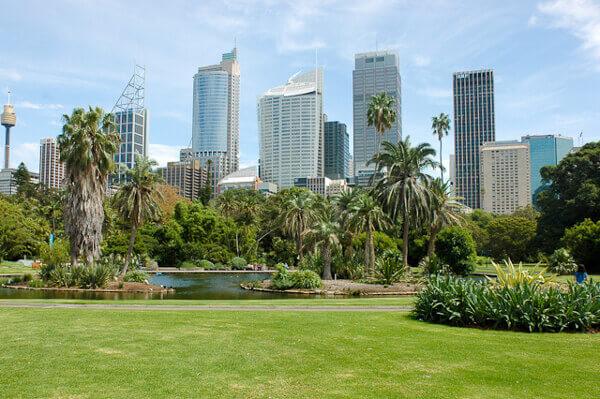 Blick auf die Skyline von Sydney von den Royal Botanic Gardens