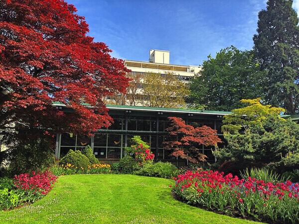 Stanley Park in Vancouver und Pflanzen in allen Farben