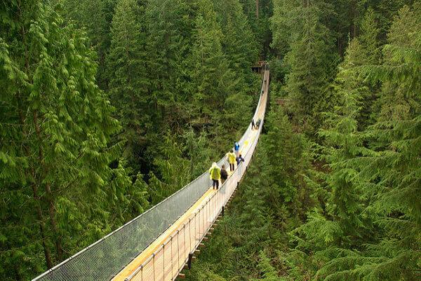 Die Capilano Suspension Bridge in Vancouver