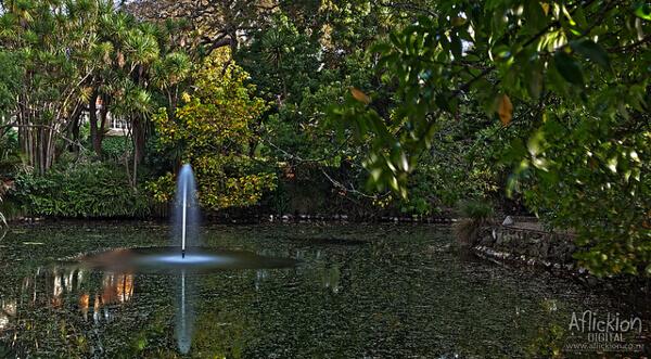 Natur im Domain-Park
