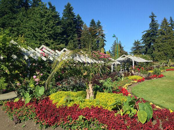 Pflanzenvielfalt im Stanley Park in Vancouver