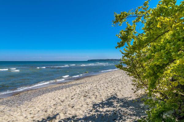 Boddenküste an der Ostsee