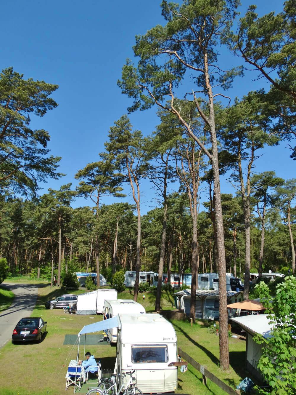 Parzellen auf dem Campingplatz Ostseeblick