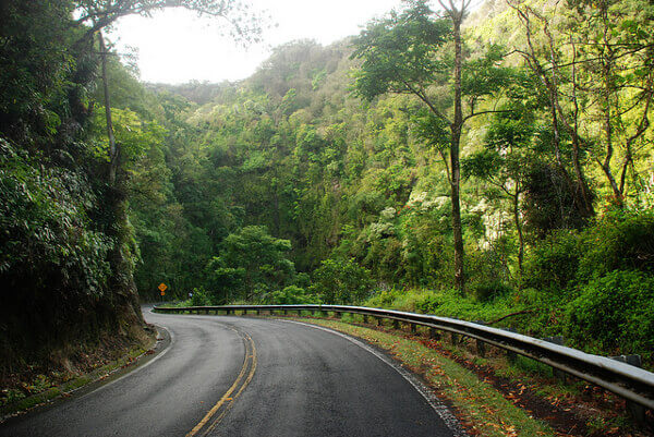 Road to Hana durch den Regenwald