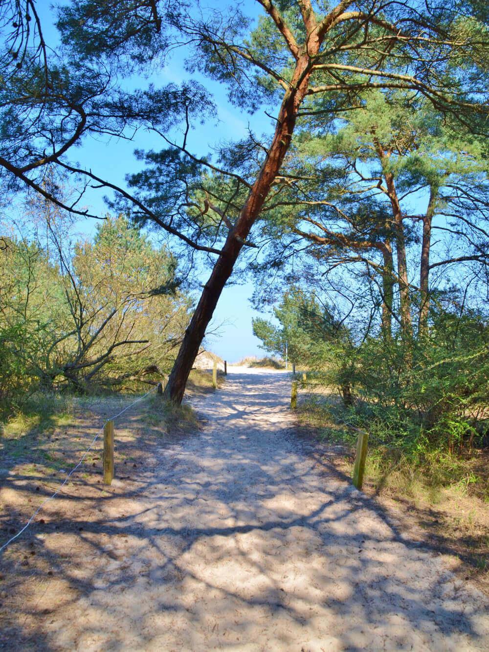 Strandzugang am Campingplatz Ostseeblick