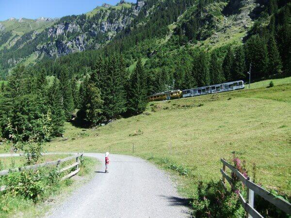Züge auf dem Weg zur Kleinen Scheidegg