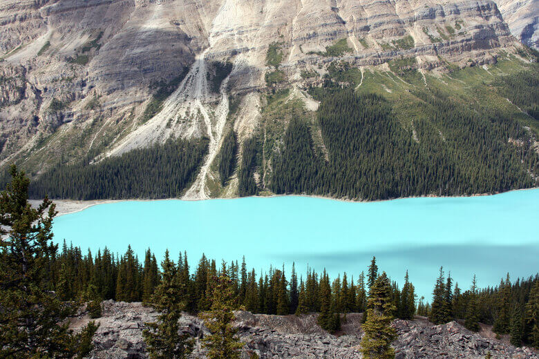 Peyto Lake Türkisfarben