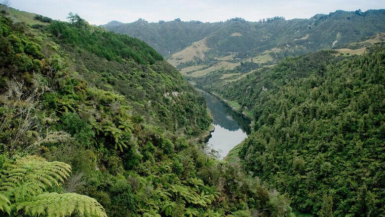 Wanganui Fluss