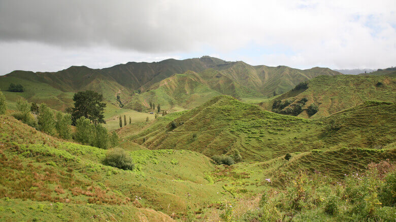 Whanganui Nationalpark