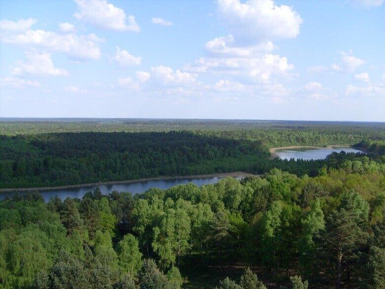 Blick auf den Müritz-Nationalpark vom Käflingsbergturm