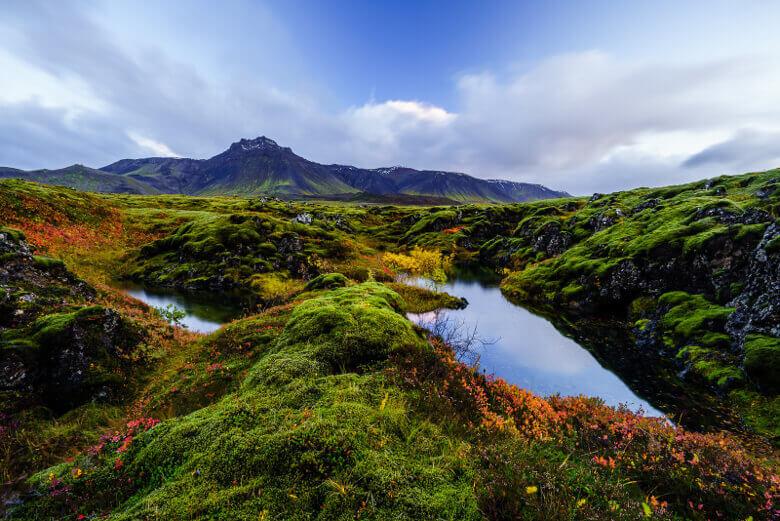 Rot, Orange, Gelb und Grün, Island im Herbst