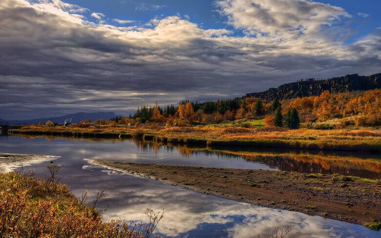 Bäume im Herbst in Island