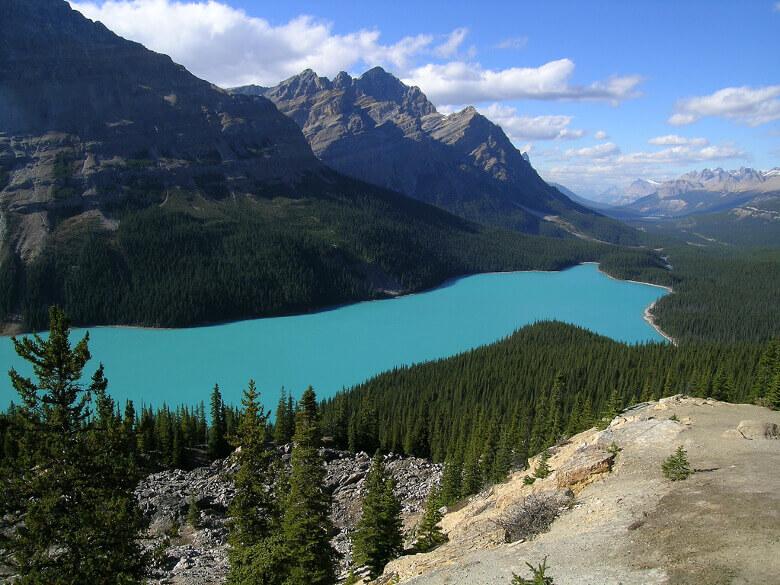 Der Peyto Lake mit seiner üppigen Wald- und Berglandschaft