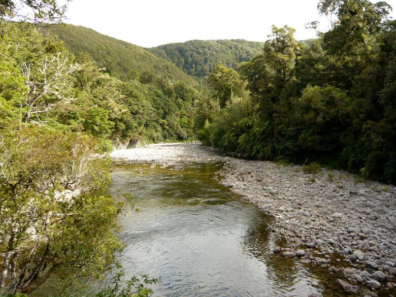 Fluss und Bäume im Kaitoke Regional Park