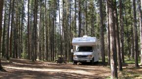 Camping im kanadischen Wald