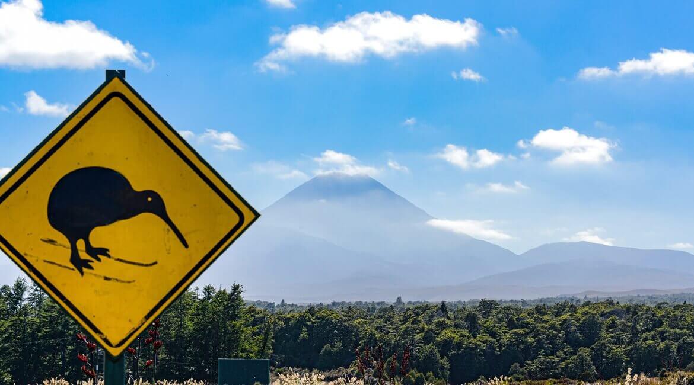 Kiwi-Sign in Neuseeland