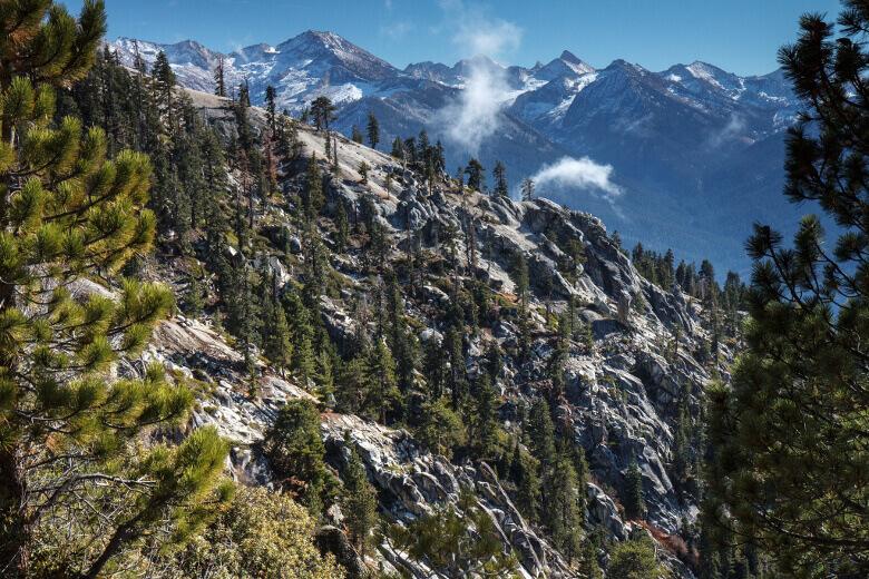 Sequoia National Park mit Bergen im Hintergrund