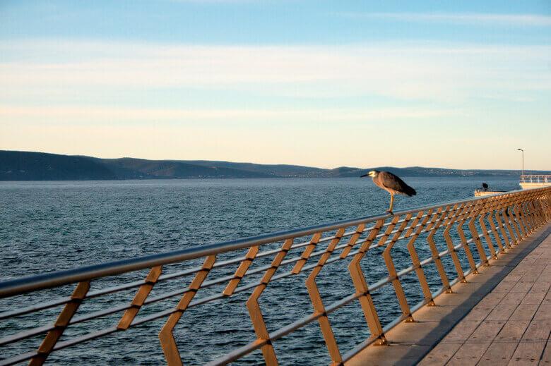 Aussicht vom Lorne Pier