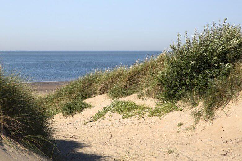 Strand von Westenschouwen in den Niederlanden