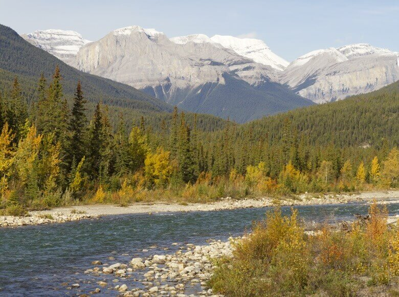 Snaring River im Jasper National Park in Kanada