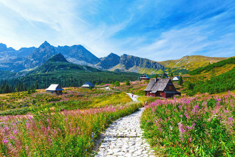 Alm im Tal Dolina Gąsienicowa in der polnischen Hohen Tatra