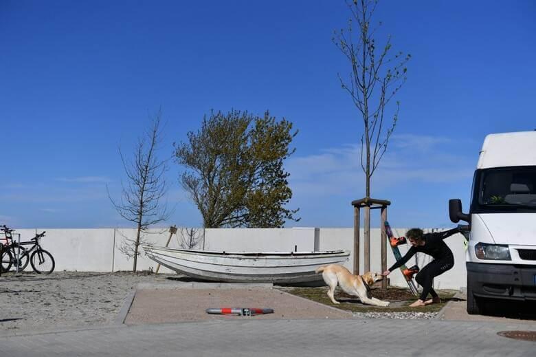 Mann mit Hund auf dem Bulliparkplatz