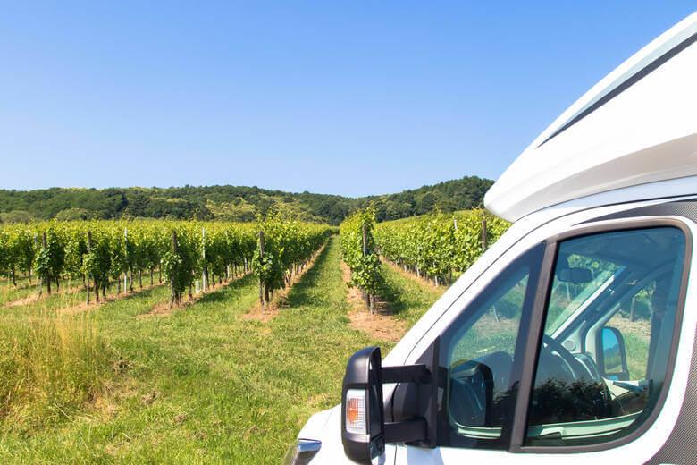 Wohnmobilstellplätz an Weinreben